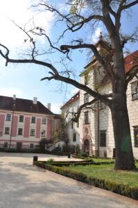 trebon-zamek