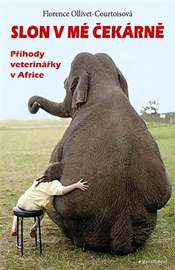 slon-v-me-cekarne
