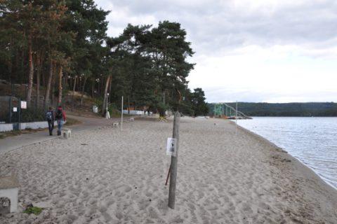 Na výlet: Doksy, Máchovo jezero a Bezděz