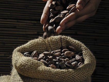 Kvalitní čokoláda: jak ji poznat?