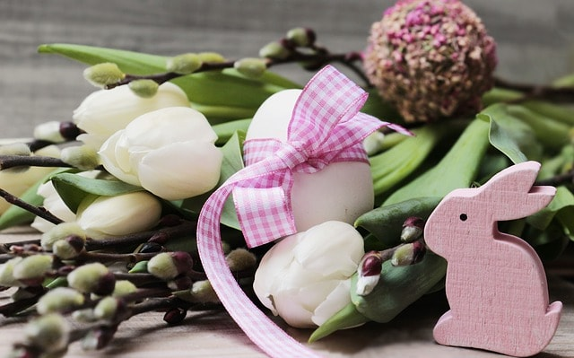 Velikonoce - pašijový týden, zajíček, vajíčko, kočičky