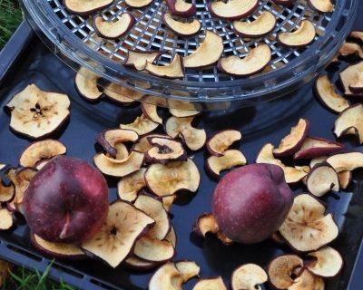 Sušené ovoce a zelenina – když máte přebytky ze zahrady nebo si rádi zamlsáte zdravěji