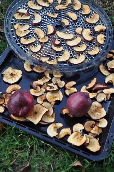 Sušené ovoce a zelenina - když máte přebytky ze zahrady nebo si rádi zamlsáte zdravěji