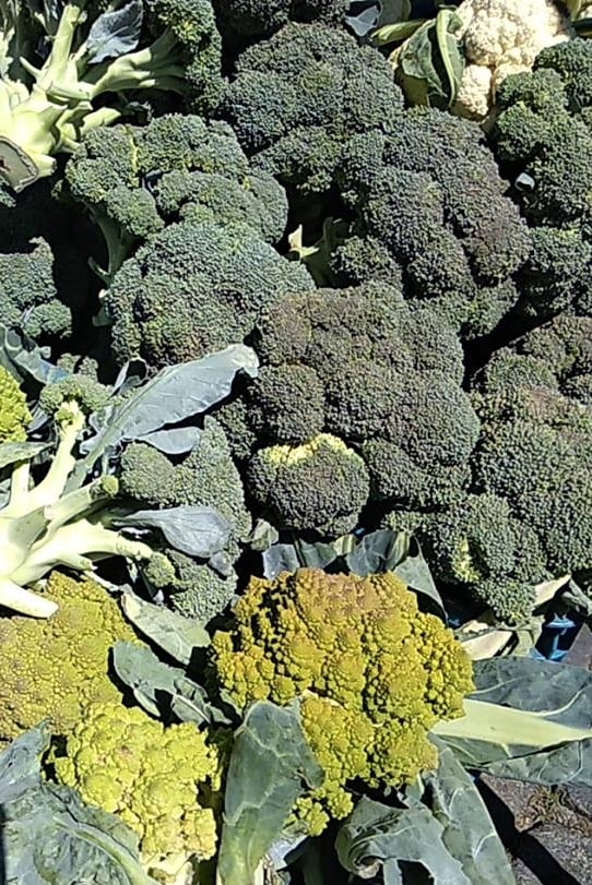 Brokolice: antioxidant a zelenina, kterou je dobré pravidelně zařazovat do jídelníčku