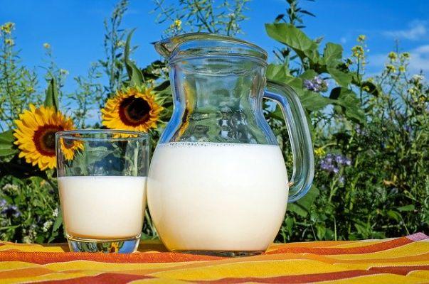 Čerstvé mléko nebo trvanlivé? Podle dTestu rozdíl ve kvalitě téměř nepoznáte